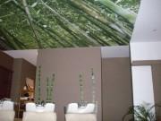 murs-plafonds-tendus-imprimes-4